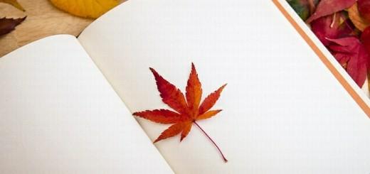 papir a list